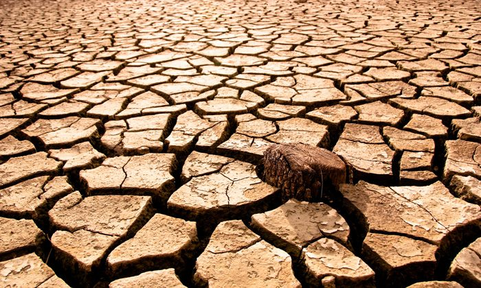 healthcare it staffing drought